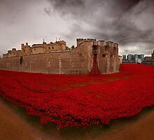 Lest we forget  by yampy