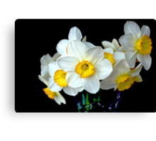 Daffodils In a Vase Canvas Print