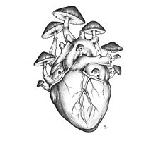 Mushroom Heart Photographic Print