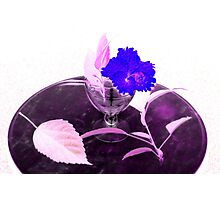 Flower & Goblet Photographic Print