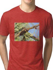 Metalic Wood-boring Beetle Tri-blend T-Shirt