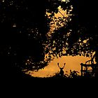 Fallow Stag Silhouette by Mike Garner