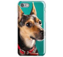 Dora Pinscher Dog iPhone Case/Skin