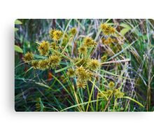 Nature In Motion Canvas Print