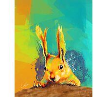 Tassel-eared Squirrel Photographic Print
