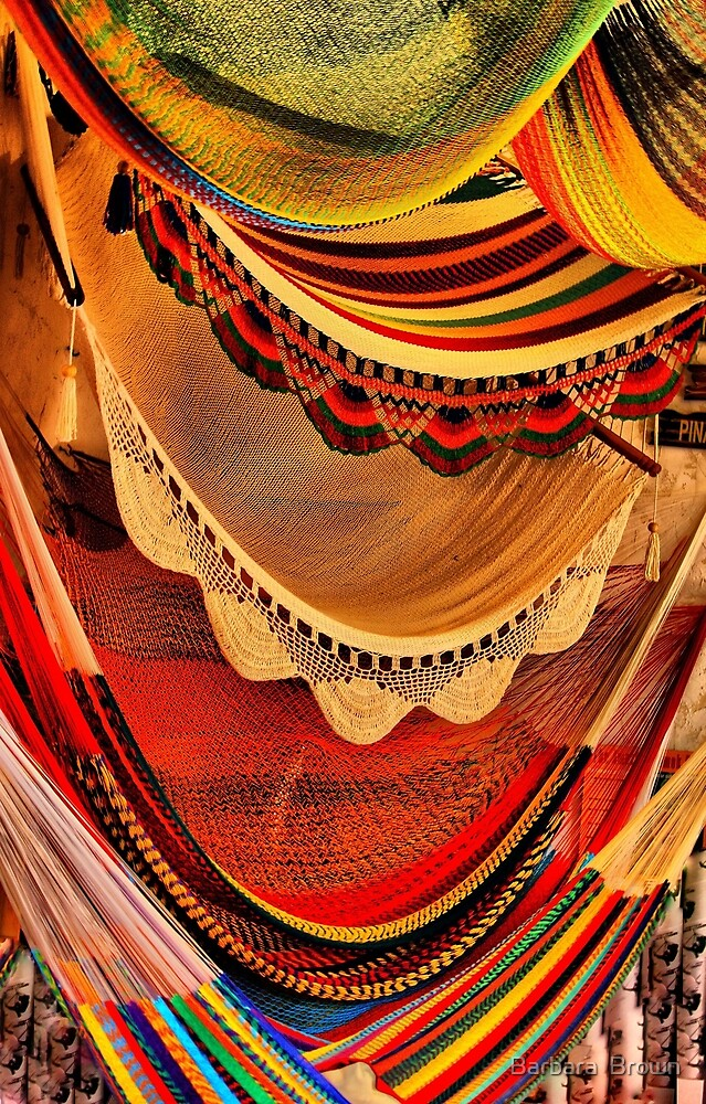 Hammocks by Barbara  Brown