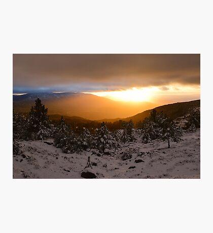 San Bernardino National Forest, Idyllwild, California Photographic Print