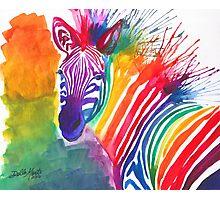 Rainbow Zebra Photographic Print