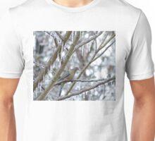 Mourning Dove Unisex T-Shirt