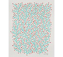 Red & Turquoise Berry Branches Photographic Print