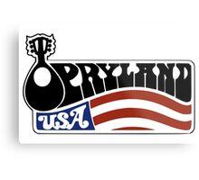 Opryland Flag 2 Metal Print