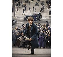 Fantastic Beasts Photographic Print