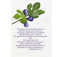 Hope - Habakkuk 3:17-19   Photographic Print