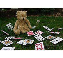 whimsical teddy bear Photographic Print