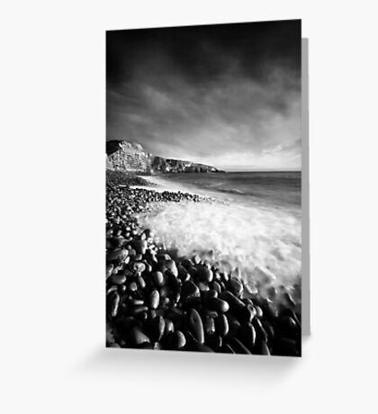 Spring Swell (Mono) Greeting Card