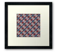 Eagle Feather Framed Print