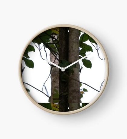 Love Trees WayKambas2012 Clock