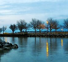 Shoreline Park - Twilight Reflections by SRowe Art