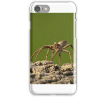 Nursery Web Spider iPhone Case/Skin
