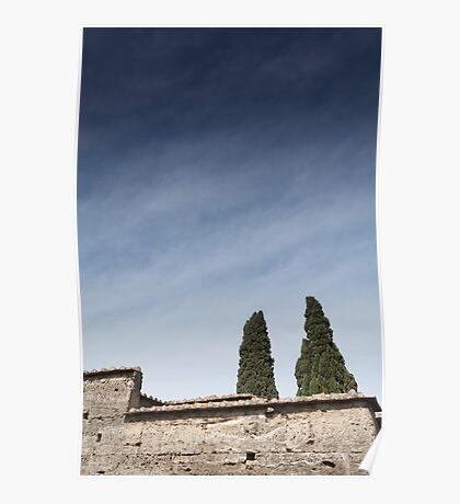 Pompeii - Two Trees Poster