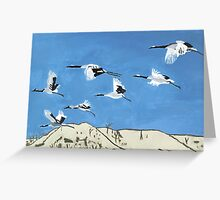 Flight Patterns Greeting Card