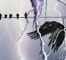 ~birds I view~ by wordwulf