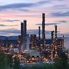 Grangemouth Refinery at Sunset by Maria Gaellman