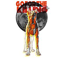 Go For The Killing Photographic Print