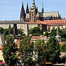 Prague 2011 147A by Priscilla Turner