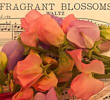 Fragrant Blossoms by Sandra Foster