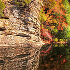 Fall Creek Falls .... A Scenic Wonderland !!! by LarryB007