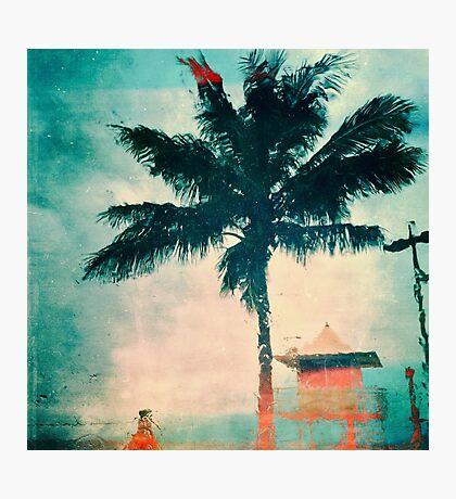 Gold Coast Palm & Lifeguard Hut Photographic Print