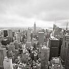 Black and white aerial view over Manhattan by Mikhail Palinchak