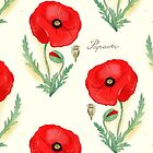 bothanical  red poppy by Gaia Marfurt