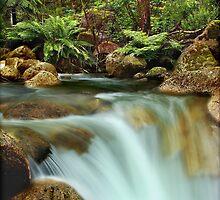 Eurobin Creek  by Kevin McGennan