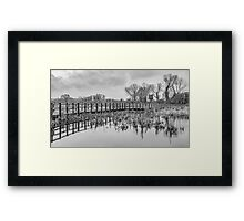 Dancing trees (black and white) Framed Print