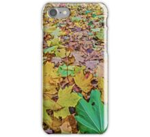 United Colours of Autumn iPhone Case/Skin