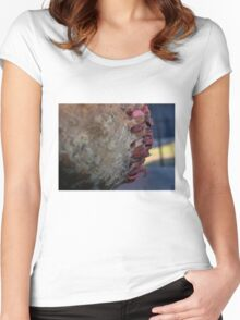 American Seams Women's Fitted Scoop T-Shirt