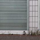 Weeds by Adam Wain