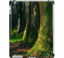 Longleat Forest - Trees at Autumn iPad Case/Skin