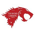 Thunder is Coming by Leopard