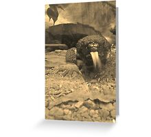 Reptile House Greeting Card