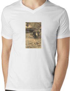 Reptile House Mens V-Neck T-Shirt