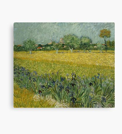 Vincent Van Gogh - Field With Flowers Near Arles 1888 Canvas Print