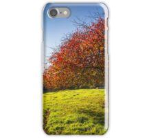 Red-Green-Blue iPhone Case/Skin