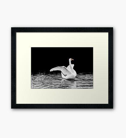 Grace Supreme 3 Framed Print