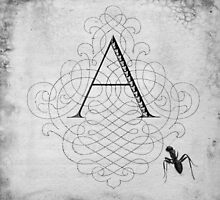 A is for Ant by Kara  Rasmanis