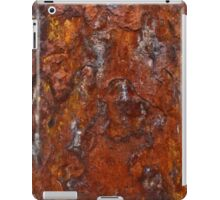 Rust 4 iPad Case/Skin