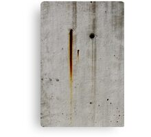 Rust Eye Canvas Print