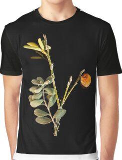 Vintage Mandarin Graphic T-Shirt